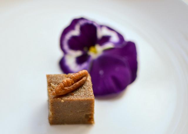 Copyright Urvashi Roe_Coffee and Pecan Nut Semolina Squares 2