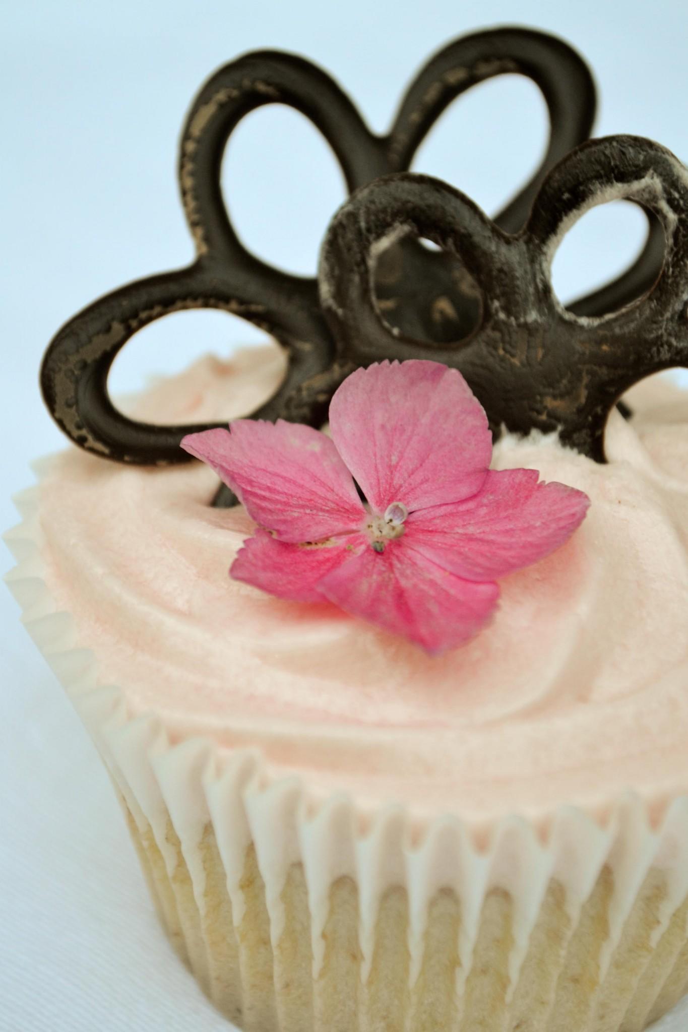 cupcake, sakura, hanami, cherry blossom