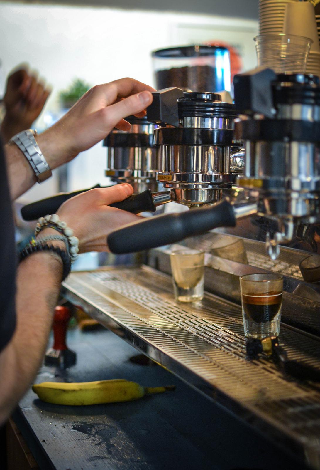 Black Sheep Coffee, coffee, robusta coffee