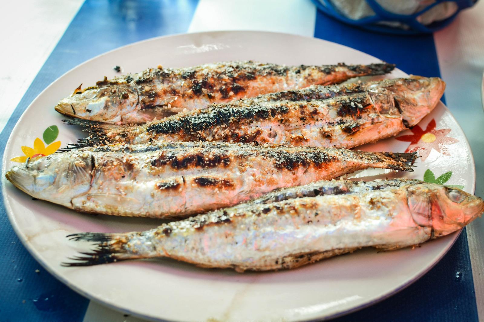 Essaouira, Morrocco, fish, sardines